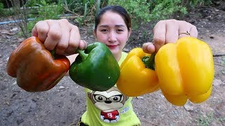 Yummy Bell Pepper Stuff Chicken Recipe - Bell Pepper Cooking Chicken - Cooking With Sros