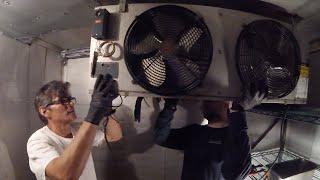 Baixar Walk In Refrigerator Installation (Replacing Evaporator Coil) HVAC/R