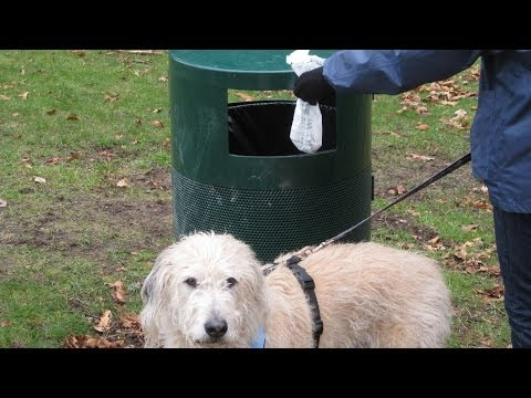 Coupon Code For Pet Waste Disposal At Amazon Com