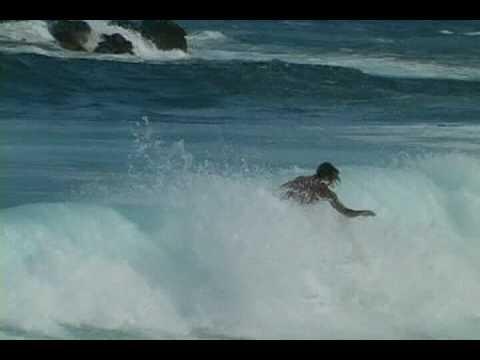 surfing hilo hawaii
