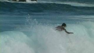 surfing hilo hawaii