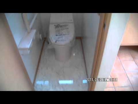 玄関とトイレ フルリフォーム/棟晶