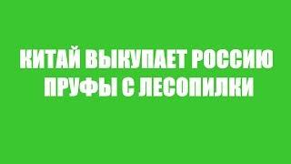 КАК ПУТИН ПРОДАЛ РОССИЮ КИТАЮ (+ПРУФЫ С ЛЕСОРУБКИ)