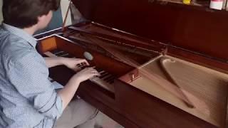Short excerpt of Anders Muskens playing J. Haydn Sonata Hob. XVI:49...