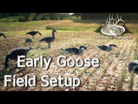 Canada Goose coats online shop - Hunting Canada Geese with Deadly? Decoys - YouTube