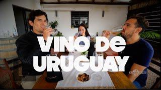 El vino de Uruguay | Uruguay #3