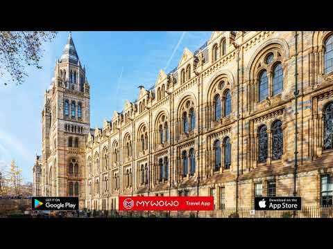 Natural History Museum – Introduction – London – Audio Guide – MyWoWo  Travel App