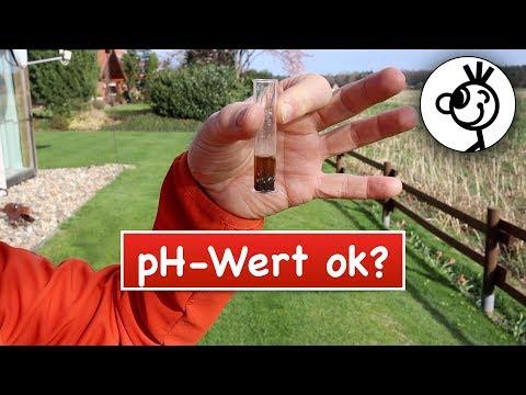 Berühmt pH Wert im Rasen messen (und senken?) | So hoch sollte er sein &XD_11