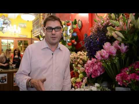 AMAPOLA, des fleurs en circuit-court