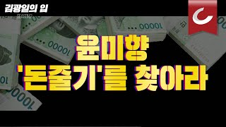[김광일의 입] 윤미향 '돈줄기'를 찾아라