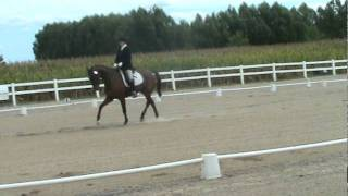 Ann Blake with Odyssey Training 3