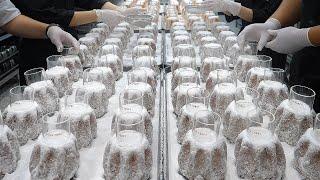 Хлеб Пандоро с ванильным кремом - массовое производство с чистой гигиеной - кафе-пекарня