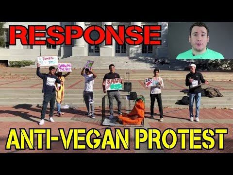 hqdefault anti vegan protest response by liam anthony protest at berkeley