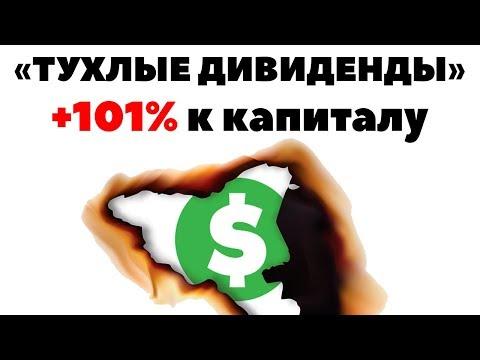 Доходность тухляк: инвестиции на 20 000$. Маленькие дивиденды и инвестиции в акции США