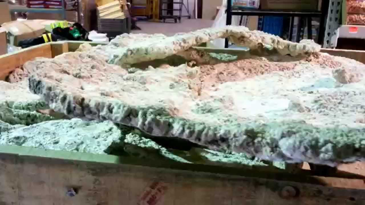 One large plate or Tonga shelf reef rock from fijireefrock ...