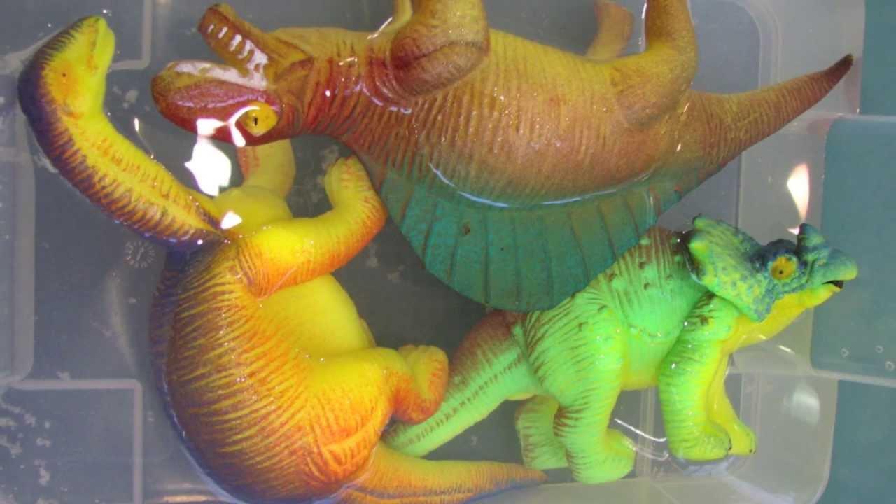 Laboratorio di fossili dei dinosauri la scienza divertente for Altalena con scivolo per bambini