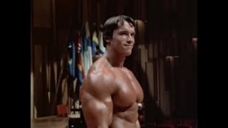 Arnold Schwarzenegger: Blueprint f๐r Success