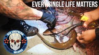 Every Single Life Matters.