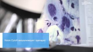 видео Анализ цитологии