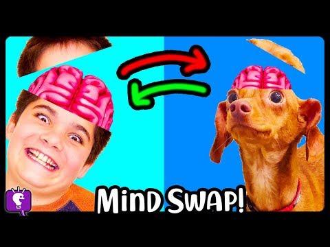 BRAIN SWAP! HobbyPig Trades Minds with HobbyFlappy - Adventure by HobbyKidsTV