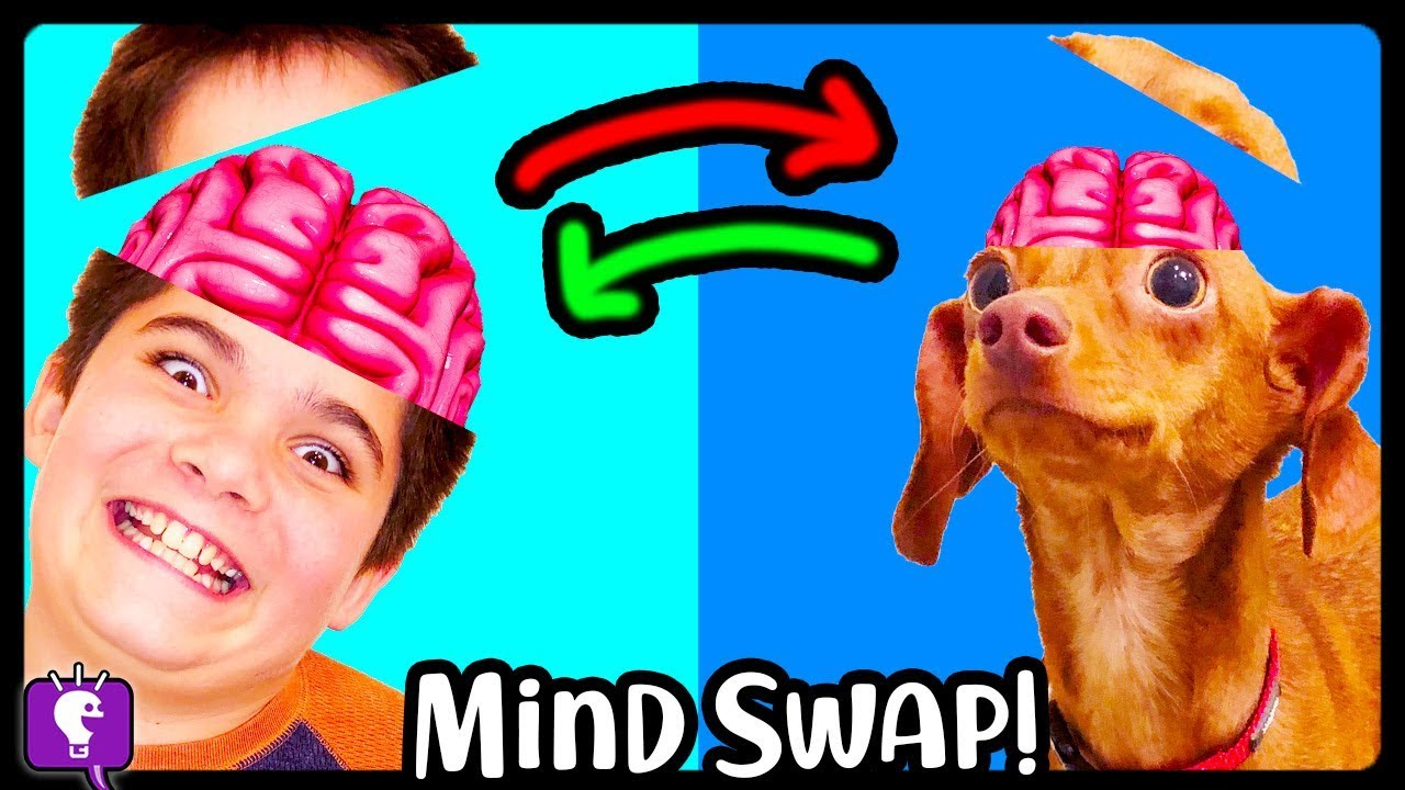 BRAIN SWAP! HobbyPig Trades Minds with HobbyFlappy - Adventure by HobbyKidsTV