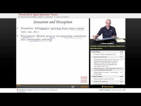 """""""Threshold & Signal Detection Theory"""" 