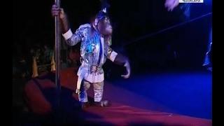 Новосибирский цирк «Золотой дракон» радует чебоксарцев(, 2017-03-21T19:32:39.000Z)