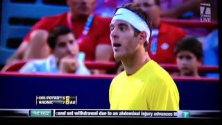 Milos Raonic touches net vs Del Potro