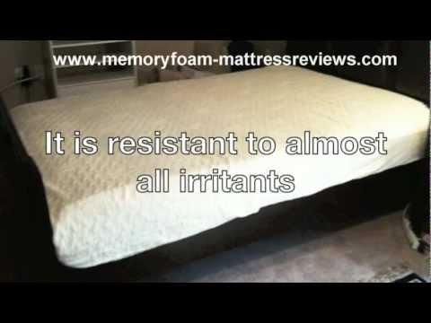 Sleep Innovations 12 Inch Suretemp Memory Foam Mattress Review Memory foam mattress reviews- best mattress for back pain | FunnyDog ...