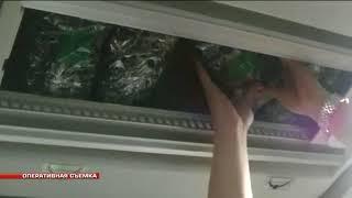 21 кг трепанга задержали уссурийские таможенники