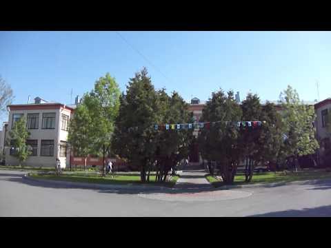 Пушкин, Институт Турнера, утро 1 июня 2011