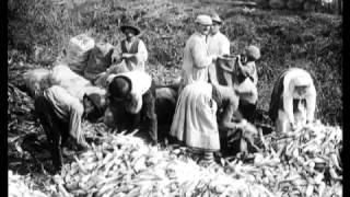 Vita rurale negli anni 50