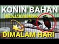 Konin Bahan Belajar Nembak Dimalam Hari Konin Gacor  Mp3 - Mp4 Download