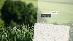 A vendre - Verfeil - 7 pièces - 383m²