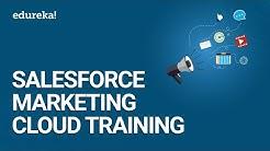 Salesforce Marketing Cloud Training | Salesforce Training For Beginners - Marketing Cloud | Edureka