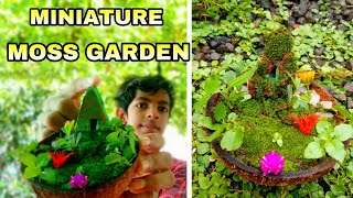 HOW TO MAKE MOSS GARDEN | COCONUT SHELL MOSS GARDEN |