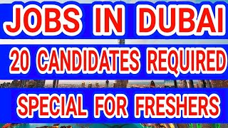 Dubai Rotana Hotel Announced New Vacancies Special For Freshers Apply Online Now