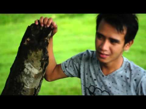 Calon Istri (Catri ) Lagu Terbaru Deswa DA Academy 2016 by Vaiz Perdana Lipsing