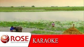 มนต์รักลูกทุ่ง - ไพรวัลย์ ลูกเพชร (KARAOKE)