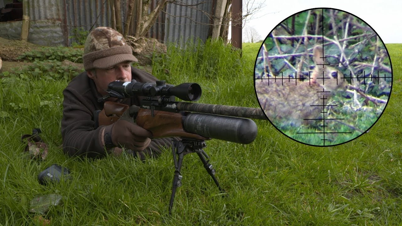 The Airgun Show – Hunting rabbits with ambush tactics, PLUS the AirForceOne  Sirocco on test… - YouTube
