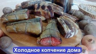 КОПТИМ СВИНЫЕ РЕБРА И РЫБУ / дымогенератор Hobbi SMOKE