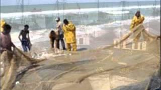 نعيمة سميح - البحارة