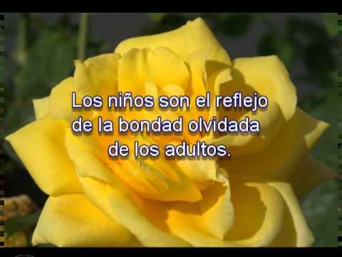 Frases y pensamientos con rosas youtube for Cancion jardin de rosas en ingles