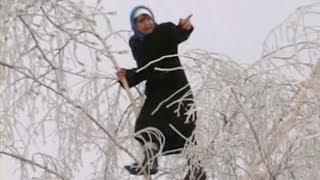 Бабка забралась на дерево