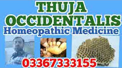 Thuja occidentalis homeopathy remedy for Warts, boils