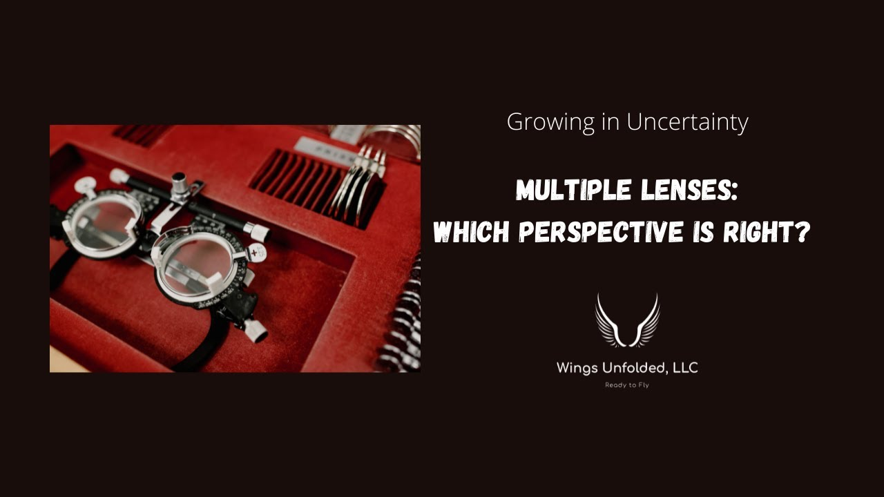 Multiple Lenses: How to Choose Which Perspective is Right
