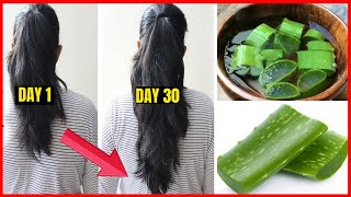 Homemade Aloevera Hair Oil Mask for Double Hair Growth Aloevera to get Long hair No Hair Fall