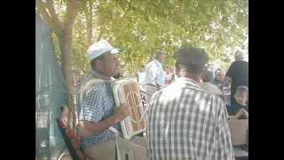 Olha o Passarinho - Musica Tradicional do Alentejo
