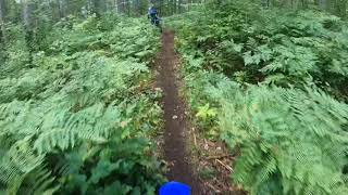 2021 YZ250X Yamaha - Gnarly Wicked Single Track in Ontario Canada