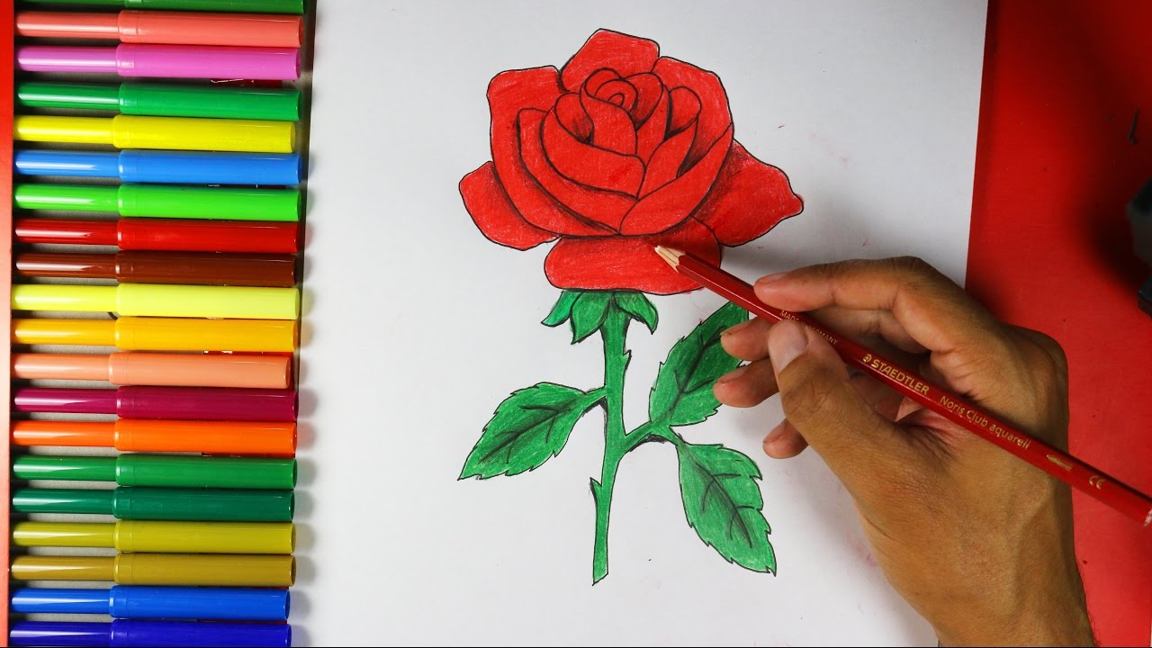 How to draw a rose easy youtube